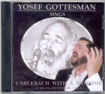 Shlomo Carlebach Download
